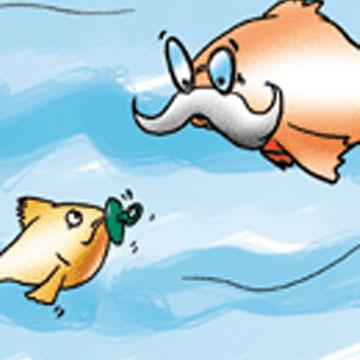 Πώς Υπολογίζουμε την Ηλικία ενός Ψαριού;