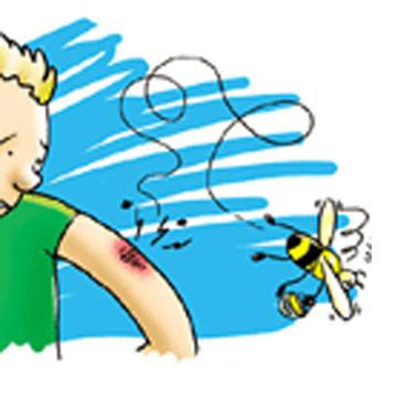 Γιατί οι Μέλισσες Πεθαίνουν όταν μας Τσιμπήσουν, ενώ οι Σφήκες όχι;