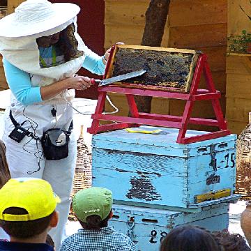 Ενας Μελισσοκόμος, Μια Ανοιξιάτικη Ημέρα...